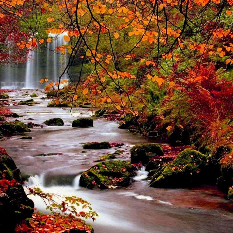10 Best Fall Nature Desktop Background FULL HD 1080p For