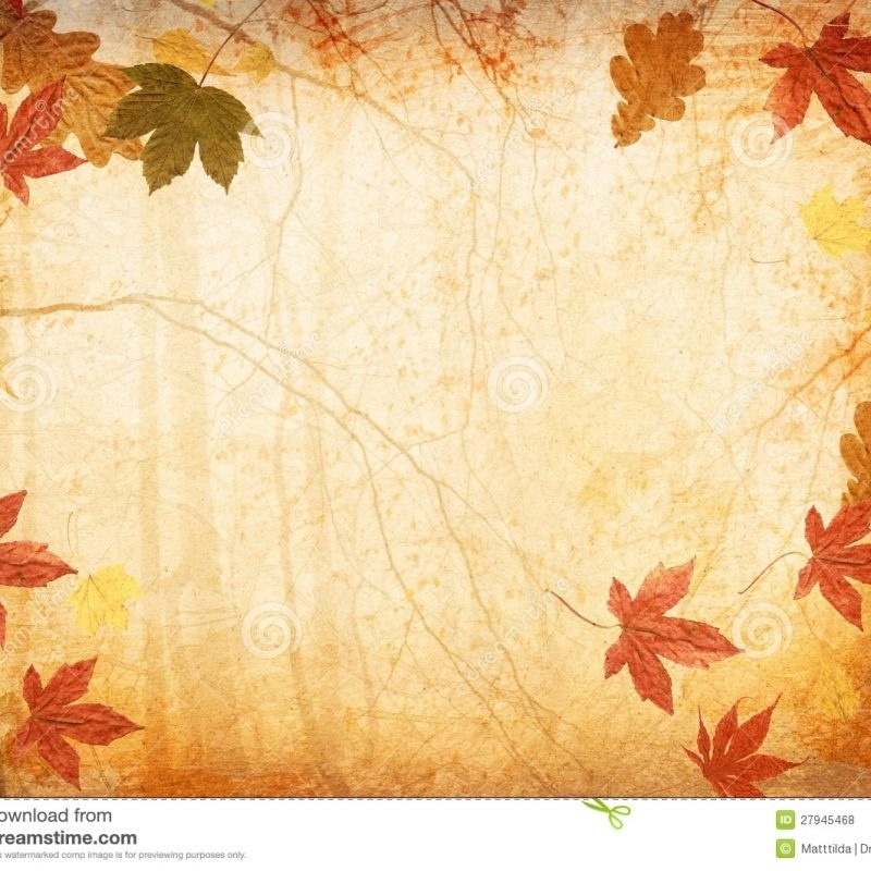 10 New Free Fall Background Photos FULL HD 1920×1080 For PC Background 2018 free download fall leaves background stock image image of beautiful 28080417 800x800