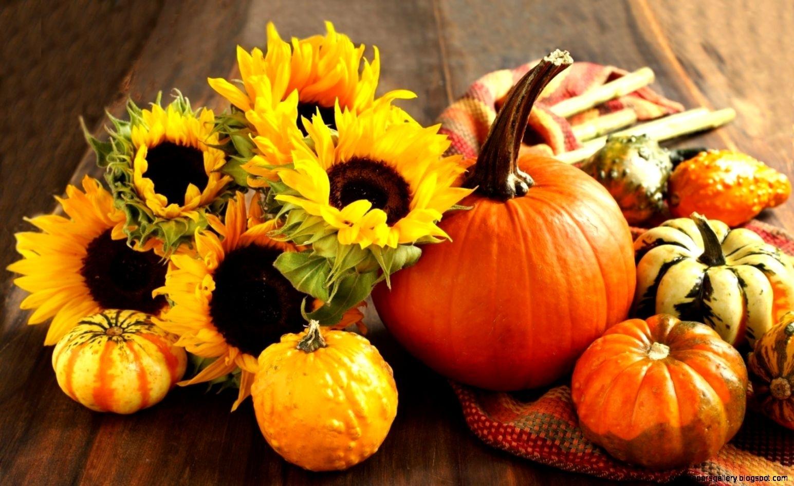 10 New Fall Pumpkin Wallpaper Hd FULL HD 1920×1080 For PC Desktop