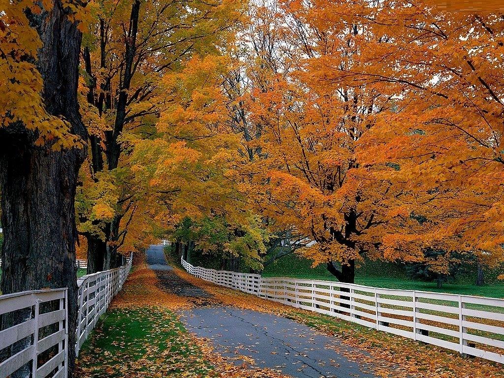 fall scenes clip art | fall desktop wallpaper free | autumn