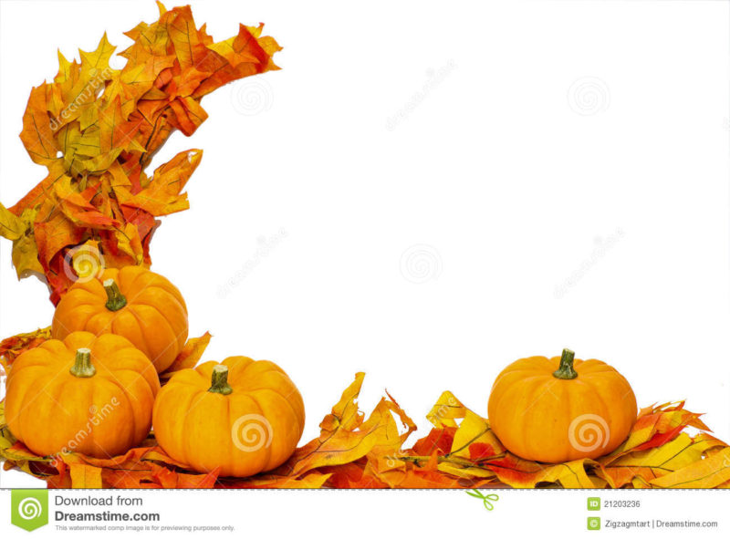 10 New Fall Thanksgiving Images FULL HD 1080p For PC Background 2021 free download fall thanksgiving halloween decoration isolated stock photo image 800x591