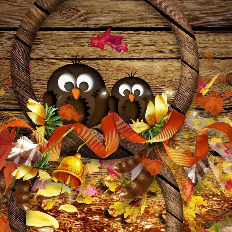 10 New Thanksgiving Hd Wallpaper Widescreen FULL HD 1920×1080 For PC Desktop 2018 free download fall thanksgiving wallpapers wallpaper cave 1 800x800