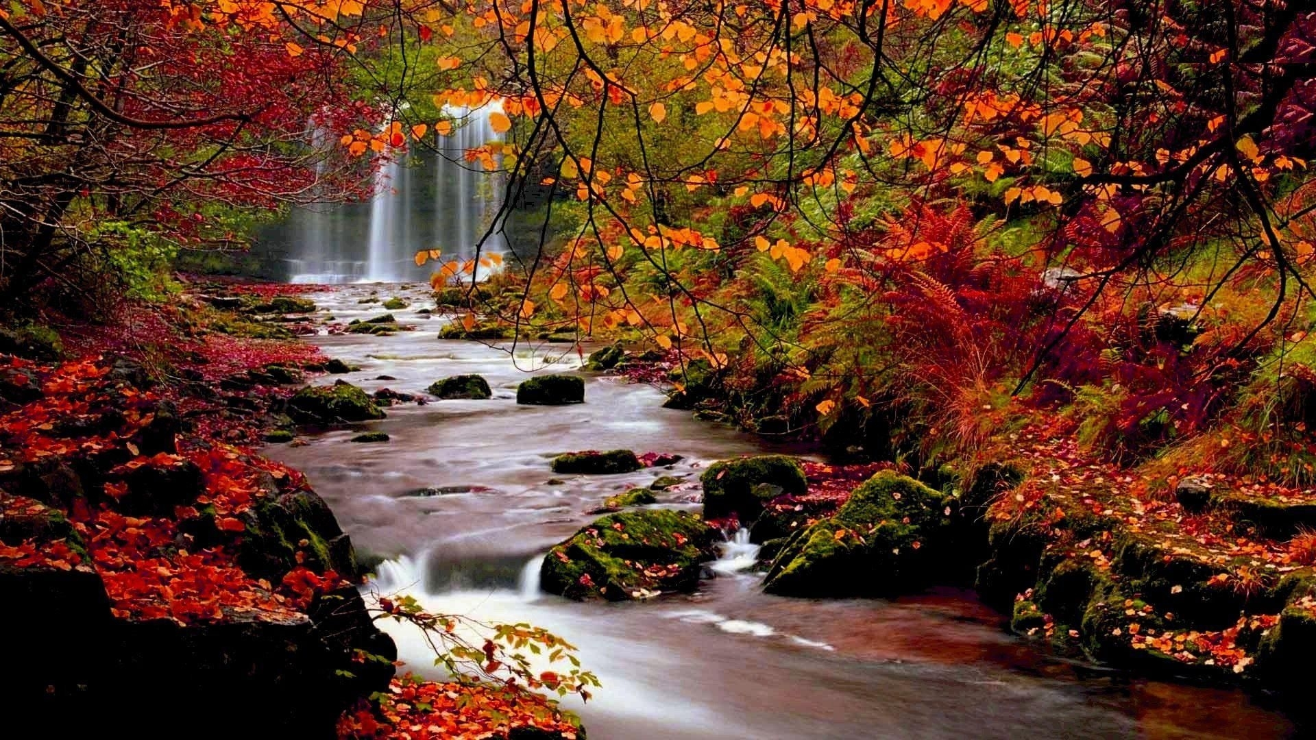 10 Best Computer Wallpaper Nature Fall FULL HD 1920×1080 For PC Background