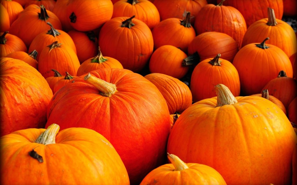 10 Latest Fall Wallpaper With Pumpkins FULL HD 1920×1080 For PC Background 2021 free download fall wallpapers with pumpkins 57 images 1024x640