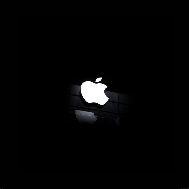 10 Best Black Apple Logo Wallpaper FULL HD 1920×1080 For PC Desktop 2020 free download fantasy white apple glass logo dark iphone 6 brands in building 800x800