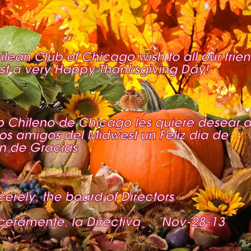 10 Best Feliz Dia De Accion De Gracias Wallpaper FULL HD 1920×1080 For PC Desktop 2018 free download feliz dia de accion de gracias club chileno de chicago 800x800