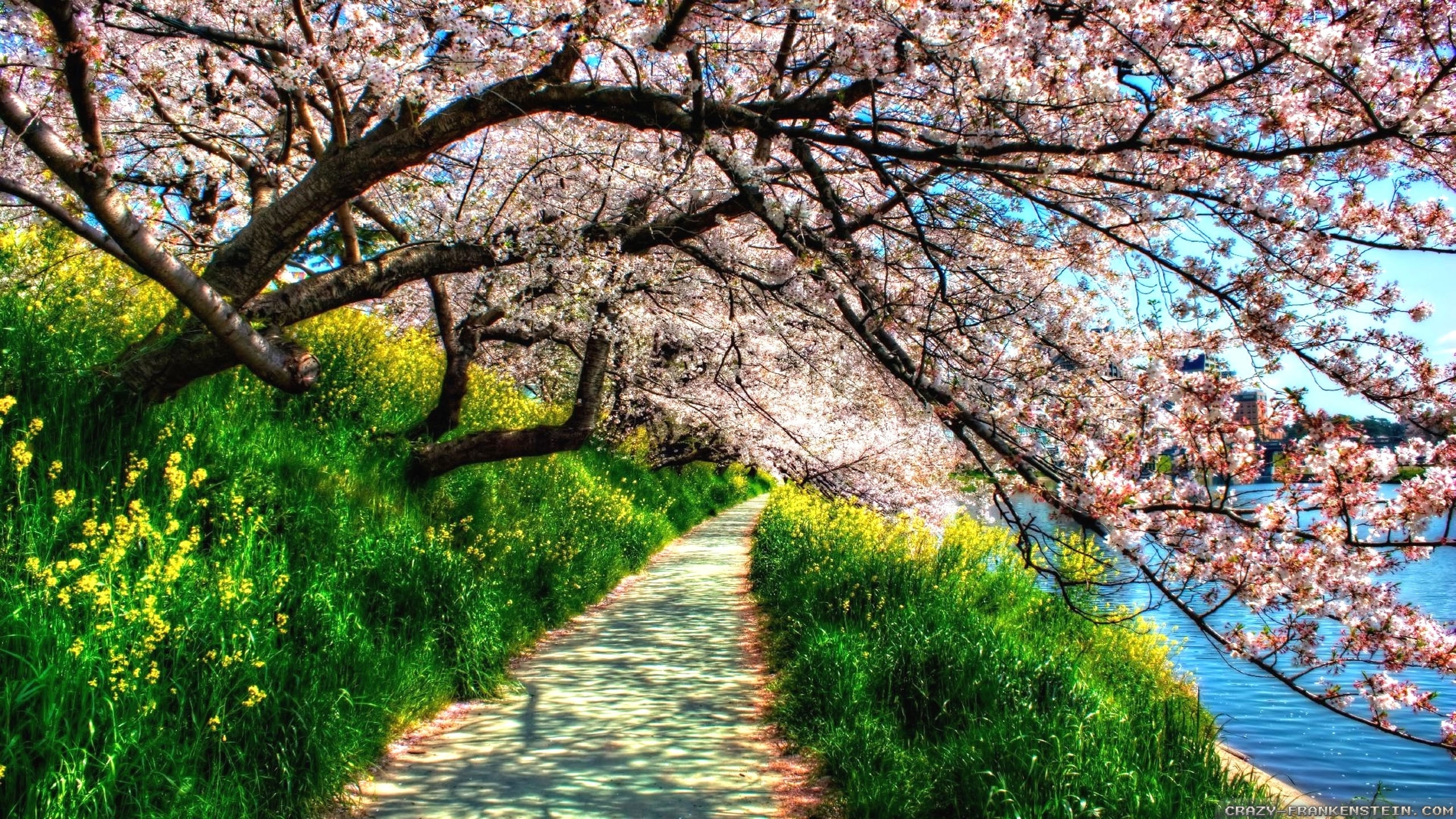 find out: spring nature wallpapers hd wallpaper on http