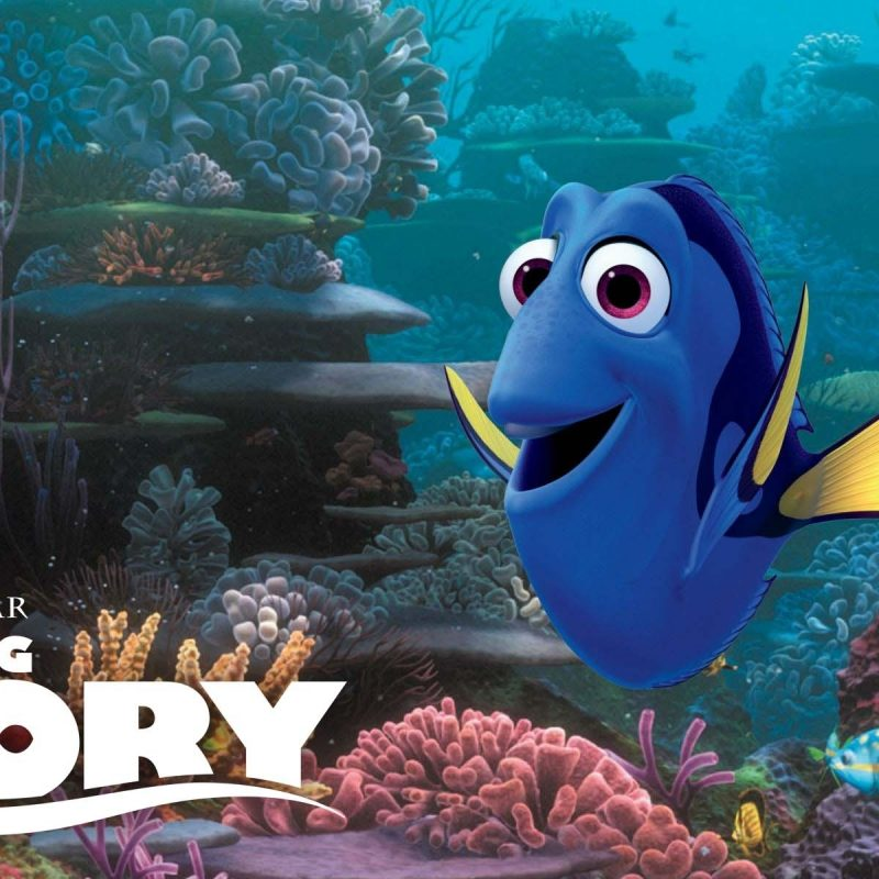 10 New Finding Nemo Movie Wallpaper FULL HD 1920×1080 For PC Background 2018 free download finding dory a sweet adventure for the whole family coronado times 800x800