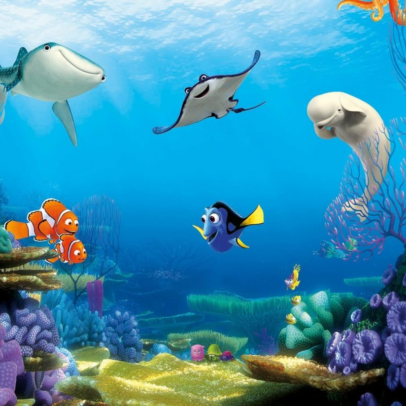 10 Latest Finding Nemo Hd Wallpaper FULL HD 1080p For PC Desktop 2018 free download finding dory hd wallpaper free download 1024x768 finding dory 800x800