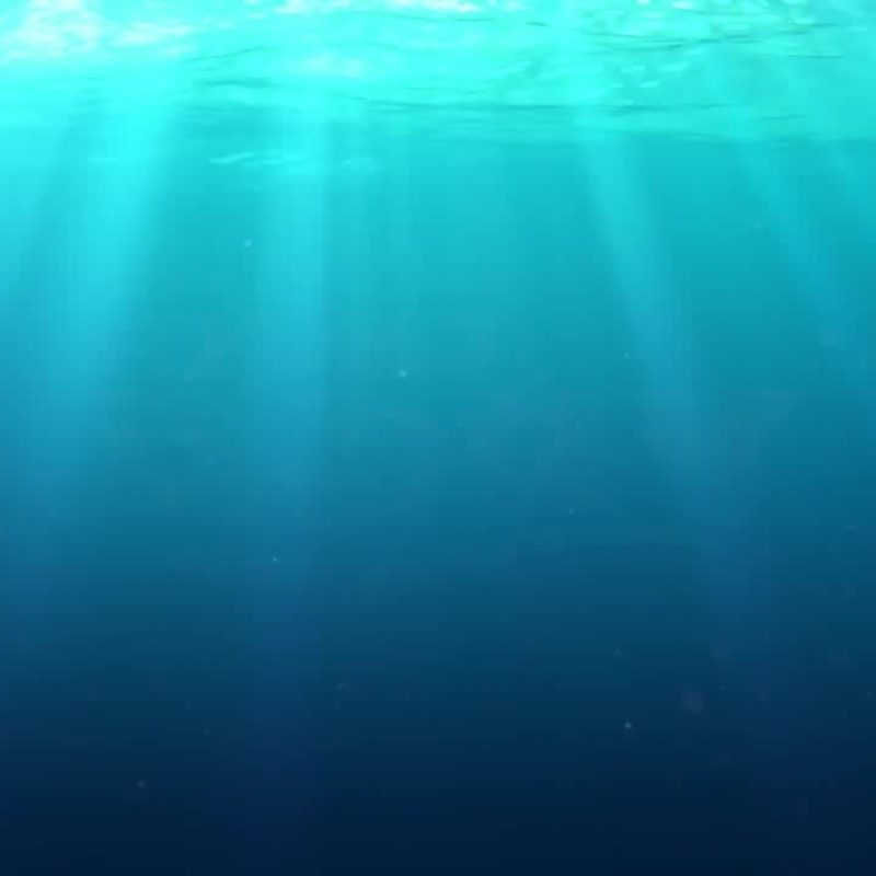10 Latest Finding Nemo Ocean Background FULL HD 1920×1080 For PC Background 2018 free download finding dory in 8 seconds coub gifs with sound 800x800