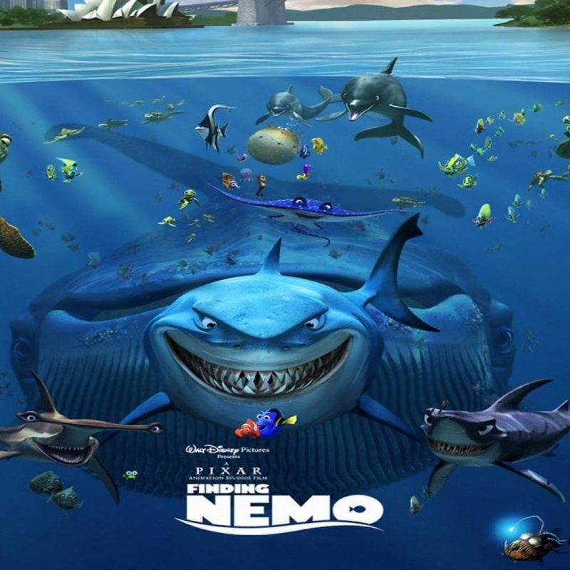 10 New Finding Nemo Movie Wallpaper FULL HD 1920×1080 For PC Background 2018 free download finding nemo 530867 walldevil 800x800