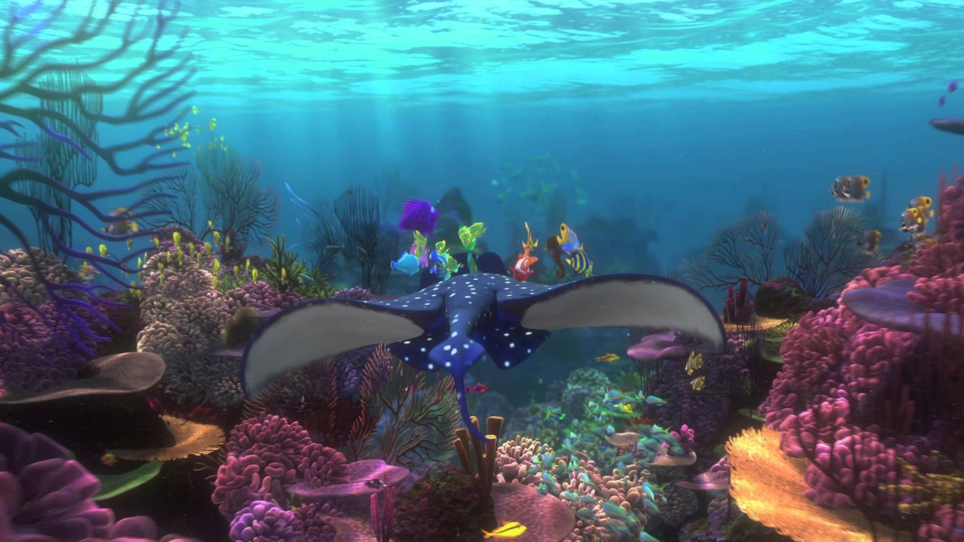 finding nemo backgrounds - wallpaper cave