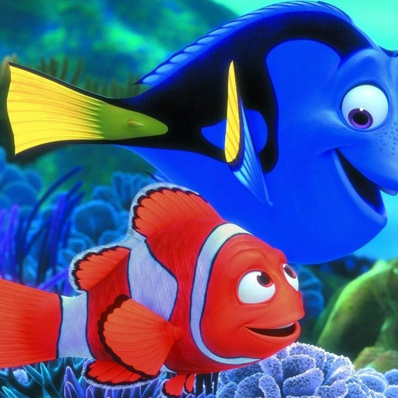 10 Latest Finding Nemo Hd Wallpaper FULL HD 1080p For PC Desktop 2018 free download finding nemo hd wallpaper image for iphone 6 cartoons wallpapers 800x800