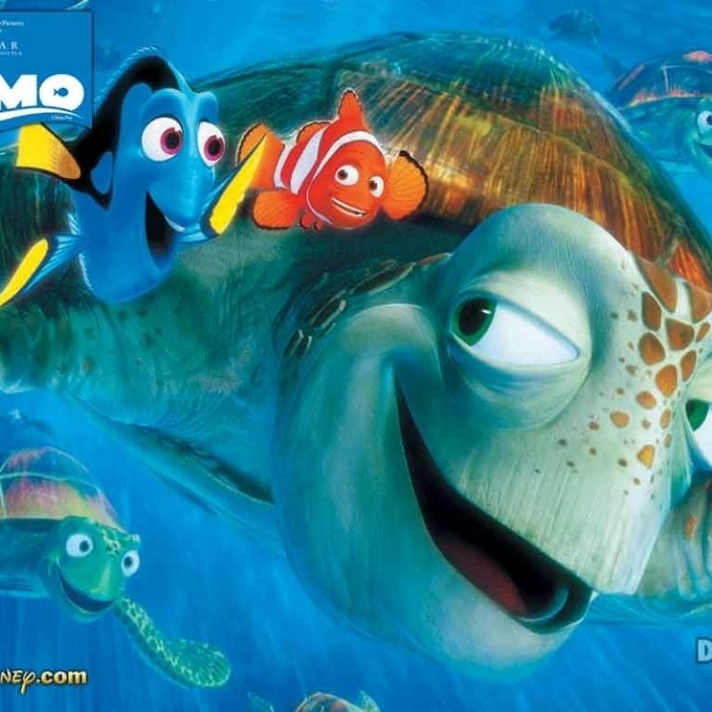 10 New Finding Nemo Movie Wallpaper FULL HD 1920×1080 For PC Background 2018 free download finding nemo turtle quote finding nemo quotes squirt wallpaper 800x800