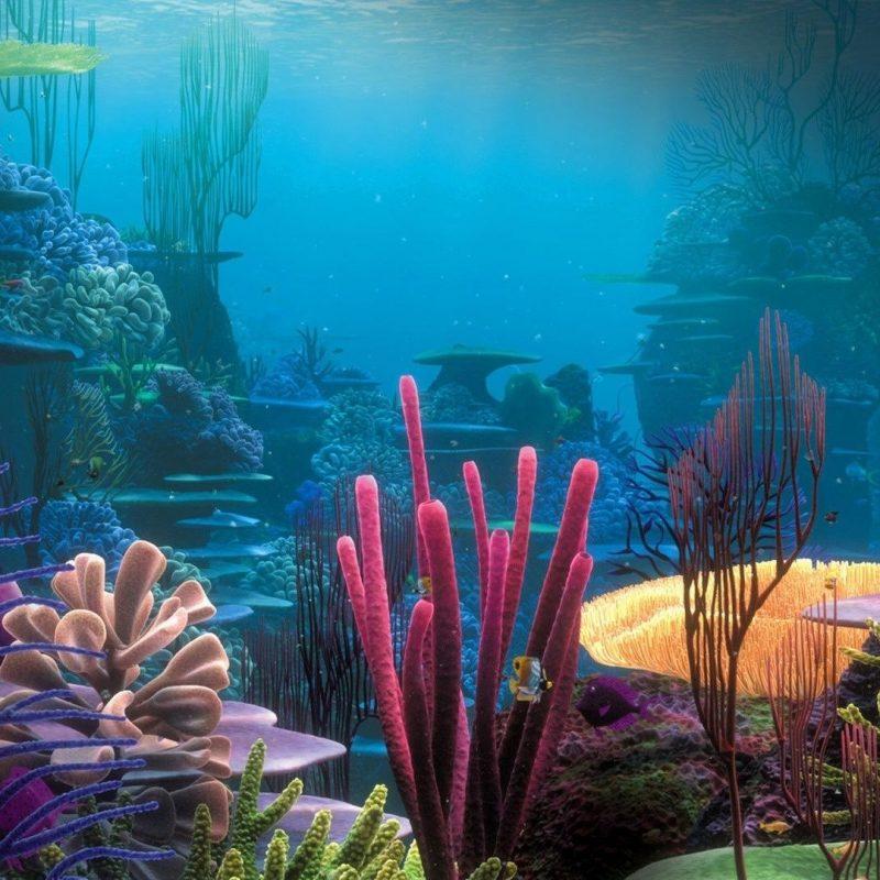 10 Latest Finding Nemo Ocean Background FULL HD 1920×1080 For PC Background 2018 free download finding nemo wallpaper background 9061 murals walls and floor 800x800