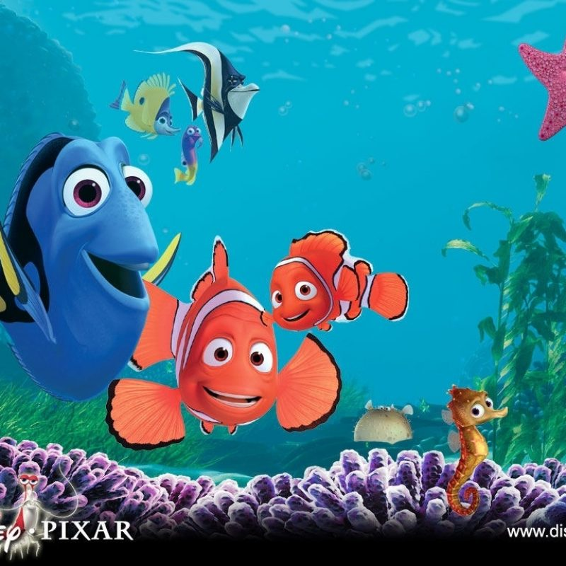 10 New Finding Nemo Movie Wallpaper FULL HD 1920×1080 For PC Background 2018 free download finding nemo wallpaper number 1 1024 x 768 pixels 1 800x800