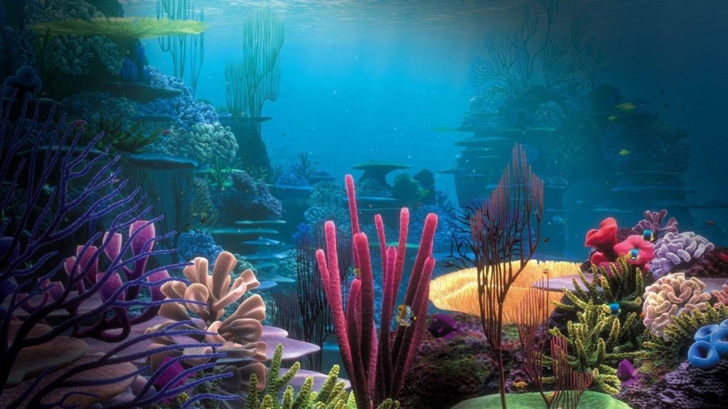 10 New Finding Nemo Wallpaper FULL HD 1080p For PC Desktop 2018 free download finding nemo wallpapers wallpaper cave 1024x576
