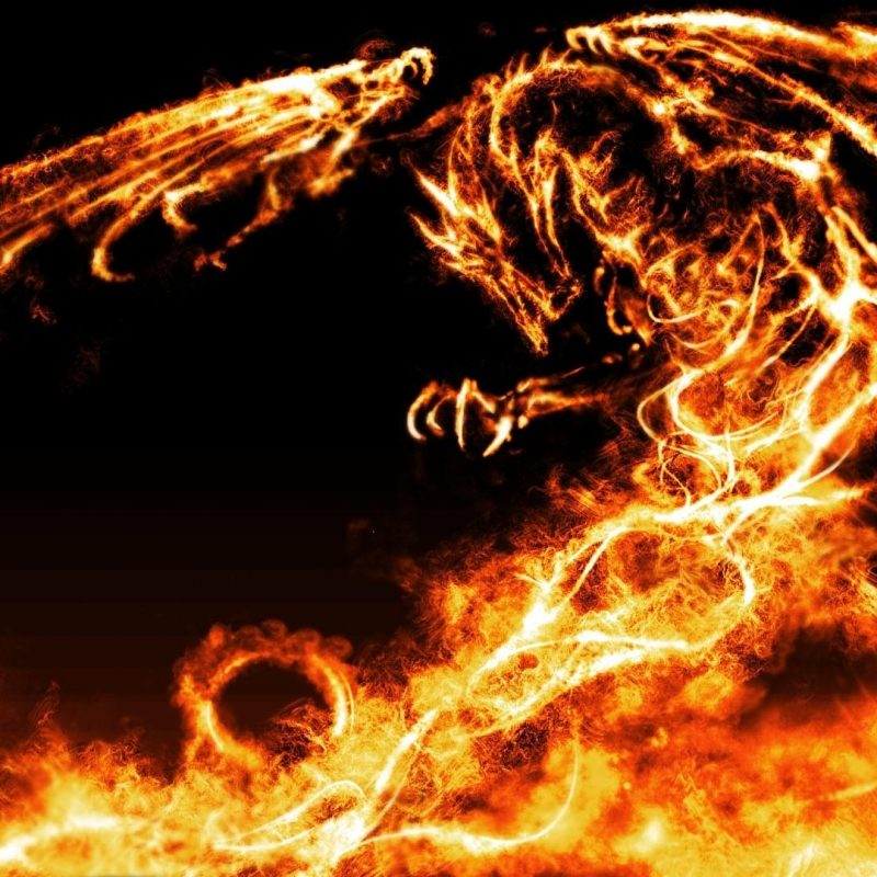 10 Latest Fire Dragon Wallpapers 3D FULL HD 1920×1080 For PC Desktop 2018 free download fire dragon wallpaper 132275 800x800