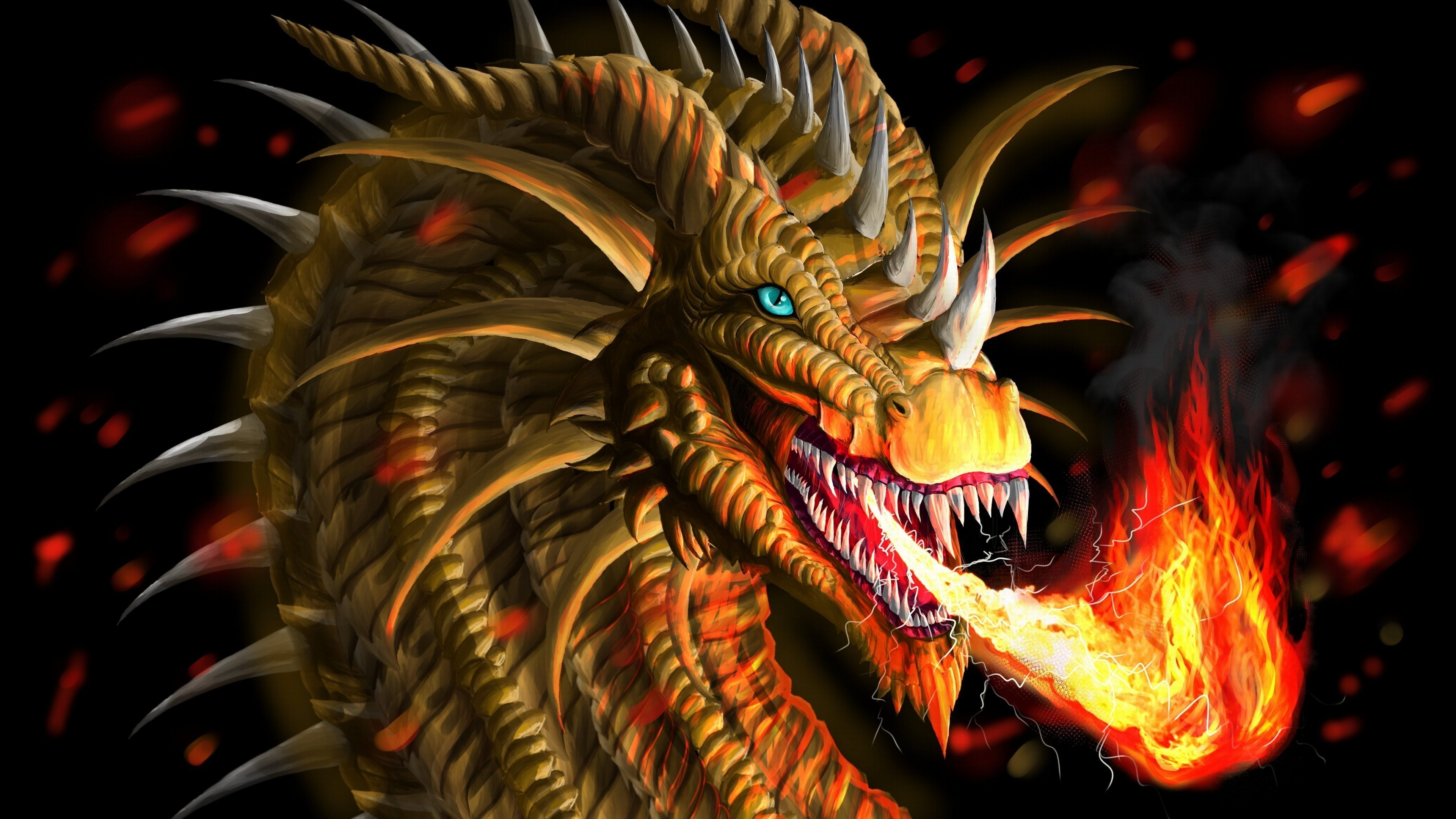 fire dragon wallpaper free download in ultra hd resolution