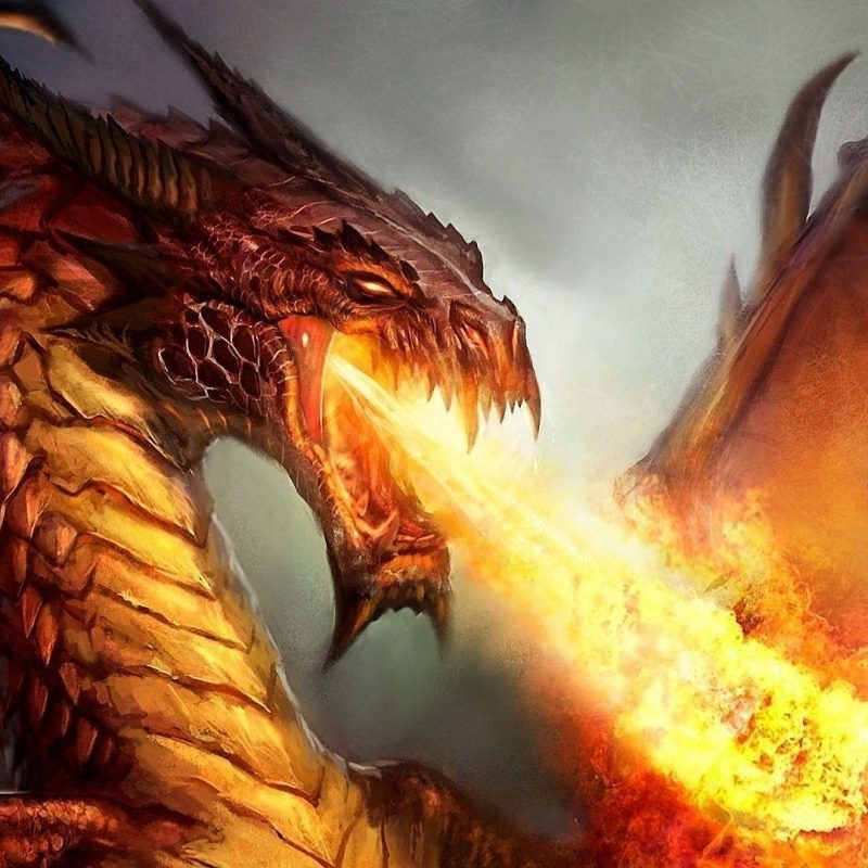 10 Latest Fire Dragon Wallpapers 3D FULL HD 1920×1080 For PC Desktop 2018 free download fire dragon wallpapers wallpaper cave 1 800x800