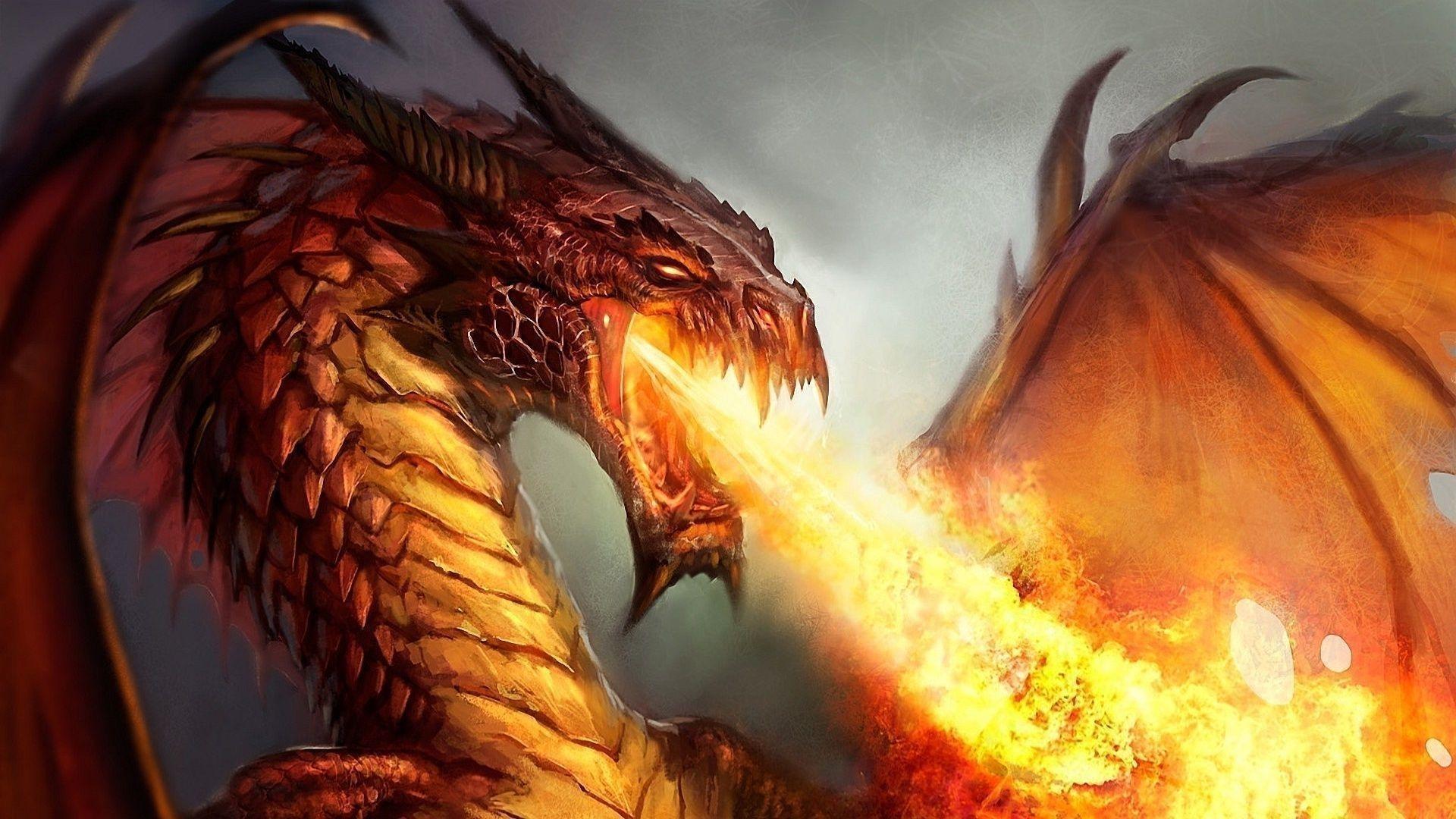 10 Latest Fire Dragon Wallpapers 3D FULL HD 1920×1080 For PC Desktop