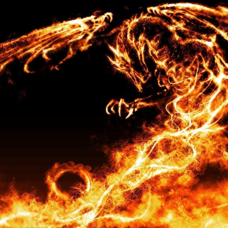 10 Best Cool Fire Dragon Wallpaper FULL HD 1080p For PC Background 2018 free download fire dragon wallpapers wallpaper cave 2 800x800