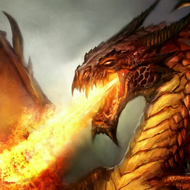 10 Latest Fire Dragon Wallpapers 3D FULL HD 1920×1080 For PC Desktop 2018 free download firebreathing dragon wallpaper wallpaper studio 10 tens of 800x800