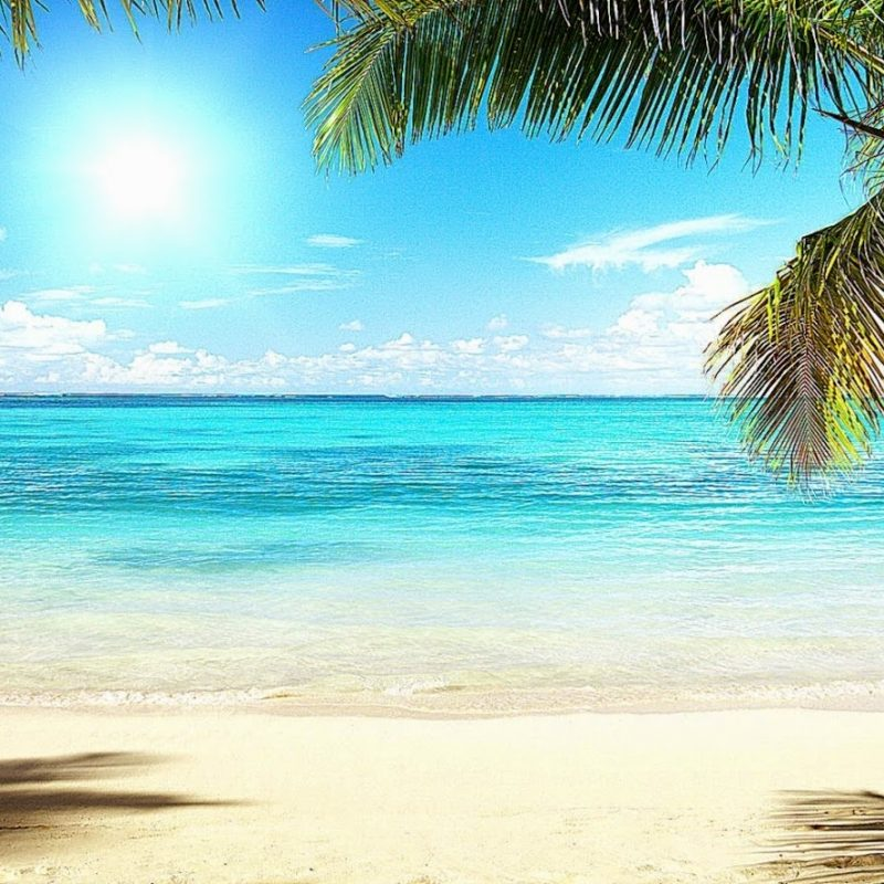 10 Top Florida Beach Wallpaper Hd FULL HD 1920×1080 For PC Background 2018 free download florida beach desktop wallpaper image wallpapers hd 800x800
