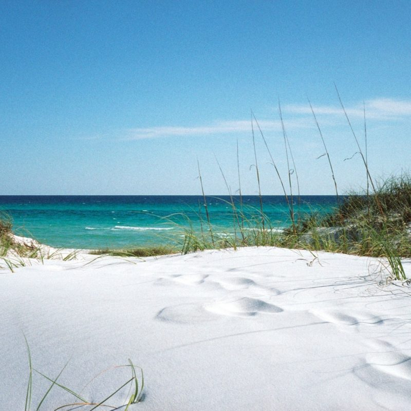 10 Top Florida Beach Wallpaper Hd FULL HD 1920×1080 For PC Background 2018 free download florida beach pictures wallpapers 68 images 800x800