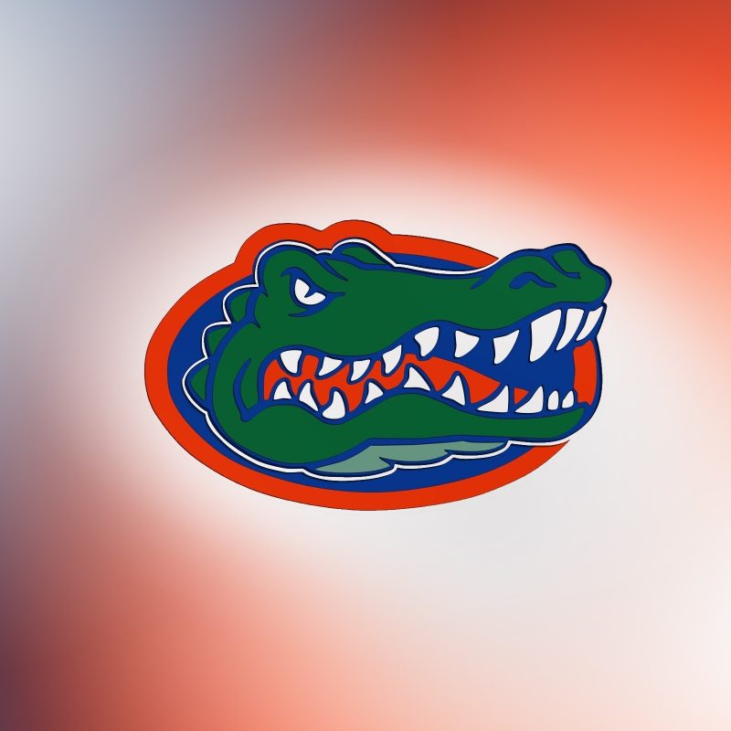 10 Most Popular Free Florida Gators Wallpapers FULL HD 1080p For PC Background 2018 free download florida gators wallpaper 20633 2560x1600 px hdwallsource 800x800
