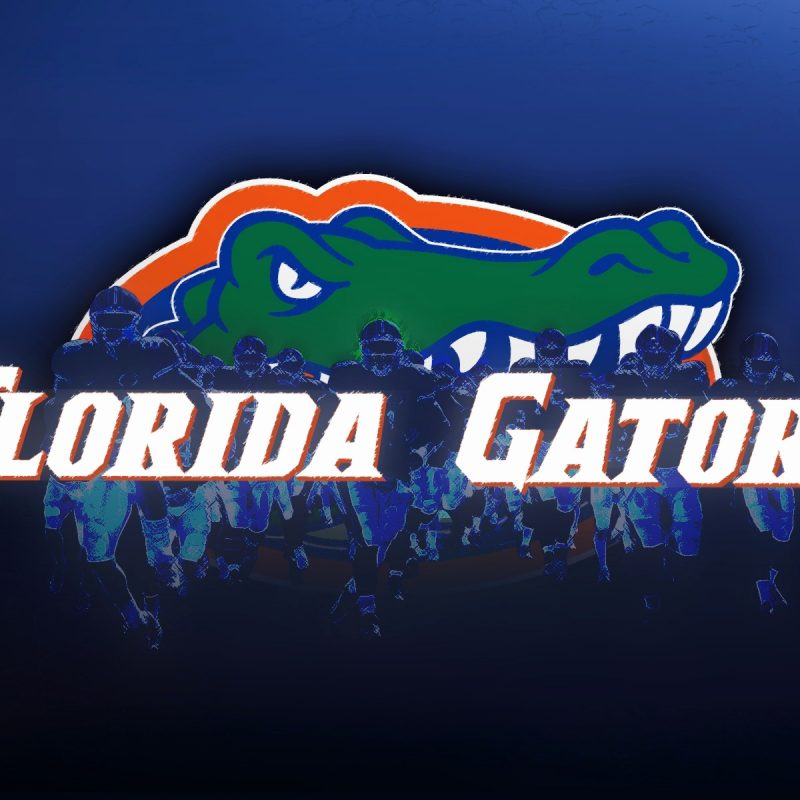 10 Most Popular Free Florida Gators Wallpapers FULL HD 1080p For PC Background 2018 free download florida gators wallpaper fresh wallpaper hd florida gators wallpaper 800x800