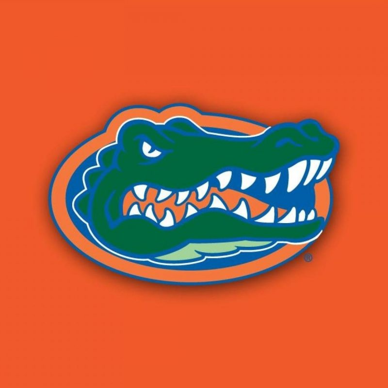 10 Most Popular Free Florida Gators Wallpapers FULL HD 1080p For PC Background 2018 free download florida gators wallpaper hd pixelstalk 1 800x800
