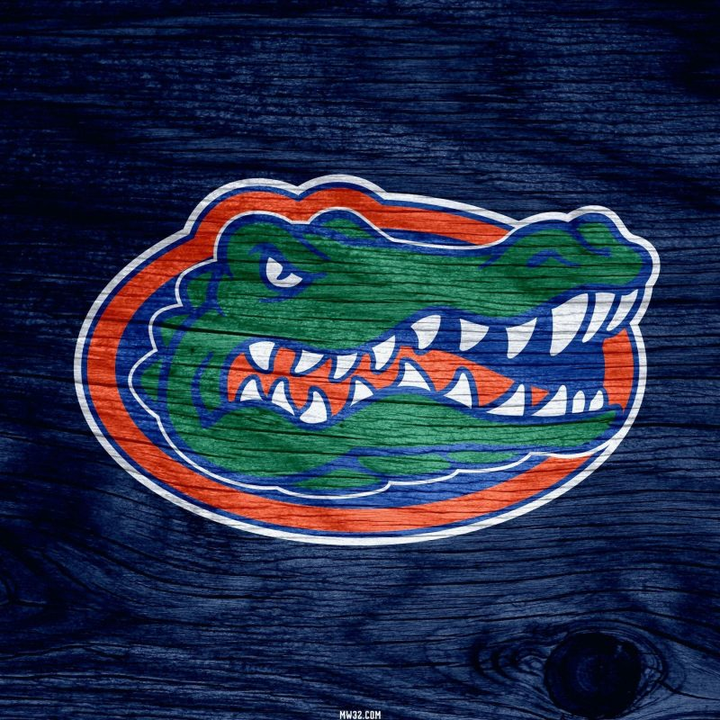10 New Florida Gator Desktop Background FULL HD 1920×1080 For PC Background 2018 free download florida gators wallpapers wallpaper cave 800x800