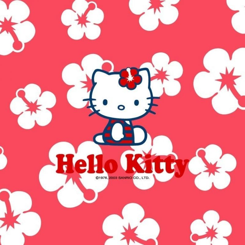 10 Best Hello Kitty Free Wallpaper FULL HD 1920×1080 For PC Background 2018 free download flower blossoming interesting white colours in middle beautifull 1 800x800
