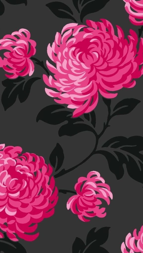 10 Top Black And Pink Flower Wallpaper FULL HD 1080p For PC Background 2018 free download flowers black hot pink fuschia ipad iphone pinterest hot 577x1024