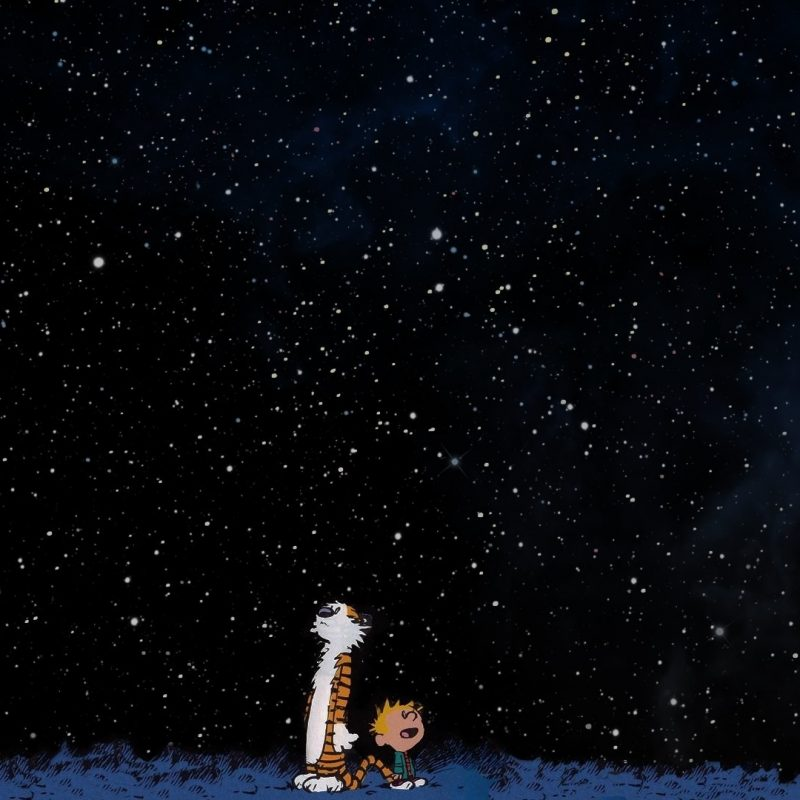 10 Best Calvin And Hobbes Hd Wallpaper FULL HD 1080p For PC Background 2018 free download fond decran 1920x1080 px calvin et hobbes espace etoiles 800x800