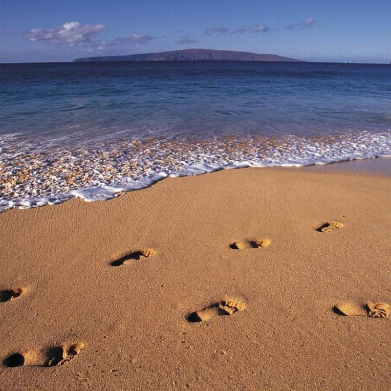 10 New Footprints In The Sand Images Free FULL HD 1920×1080 For PC Desktop 2018 free download footprints a christian pilgrimage 800x800
