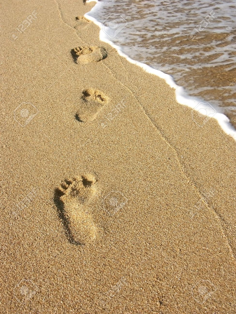 footprints along the seashore stock photo, picture and royalty free