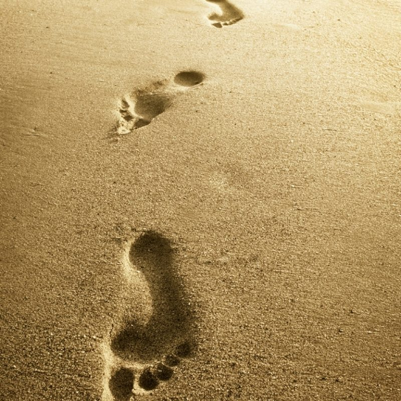 10 Latest Footprints In The Sand Pictures FULL HD 1920×1080 For PC Desktop 2018 free download footprints be you for a purpose 800x800