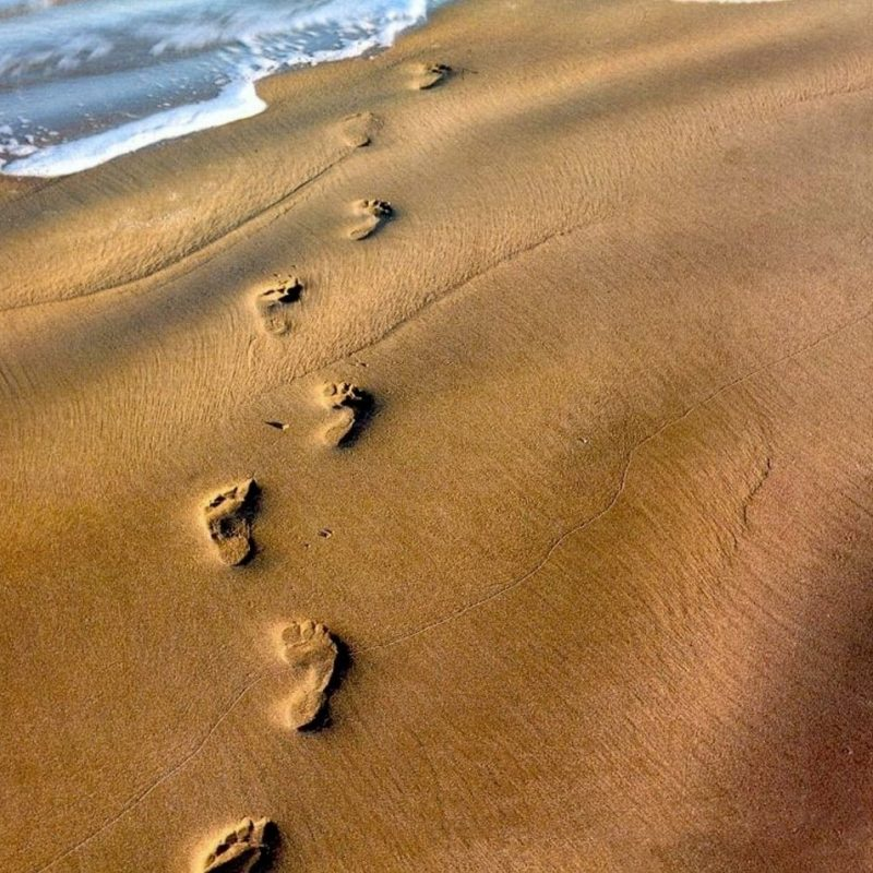 10 Latest Footprints In The Sand Pictures FULL HD 1920×1080 For PC Desktop 2018 free download footprints in the sand 1080p hd performedstephen meara blount 800x800