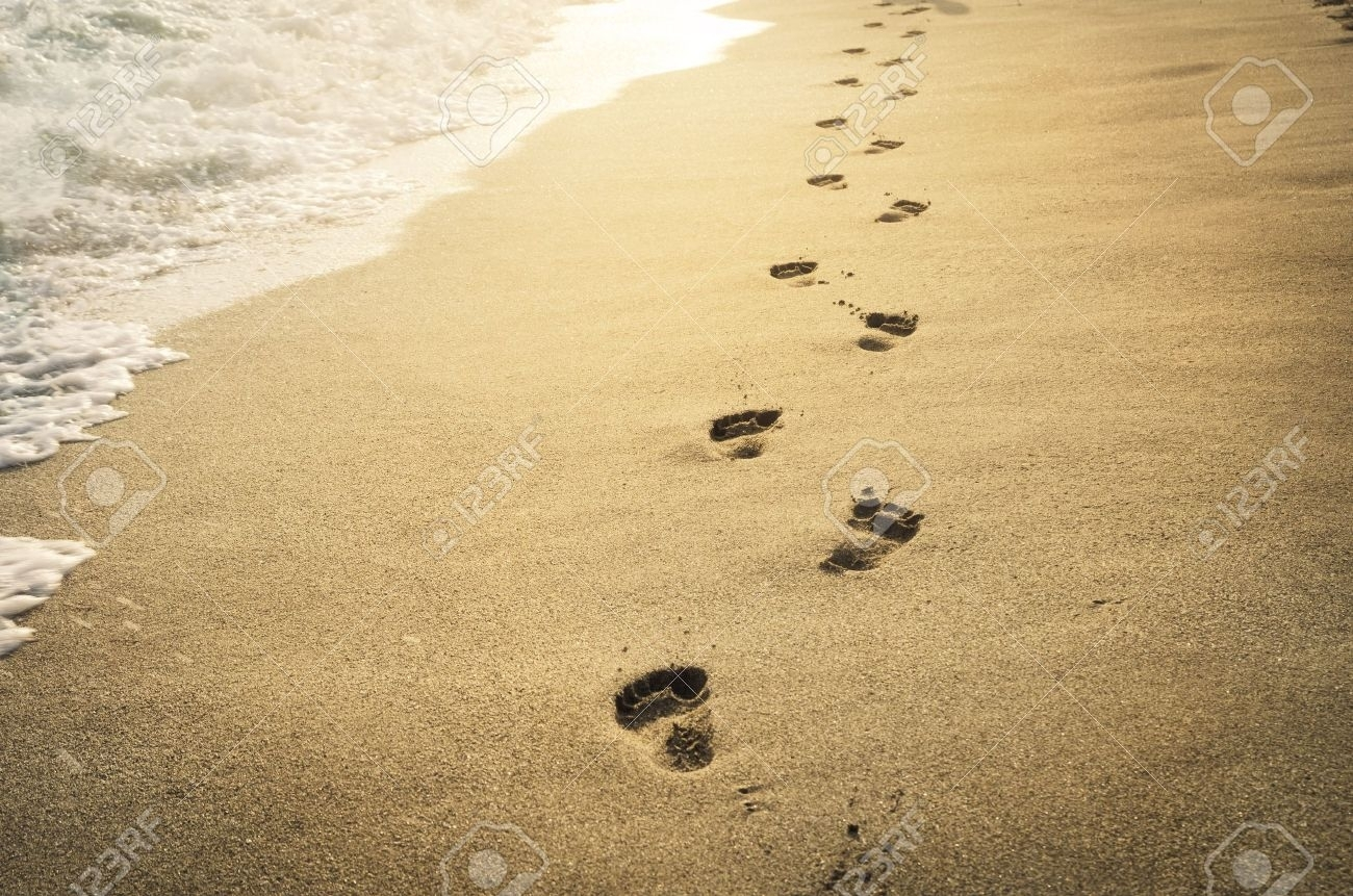 footprints in the sand at sunset stock photo, picture and royalty