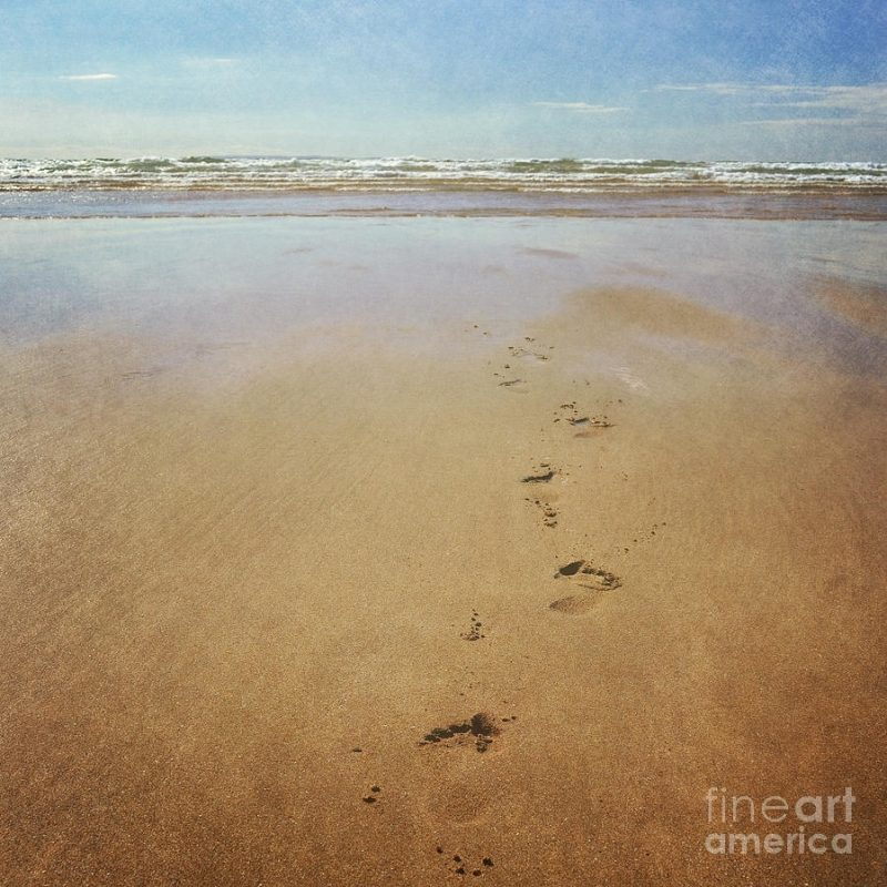 10 Latest Footprints In The Sand Pictures FULL HD 1920×1080 For PC Desktop 2018 free download footprints in the sand photographlyn randle 800x800