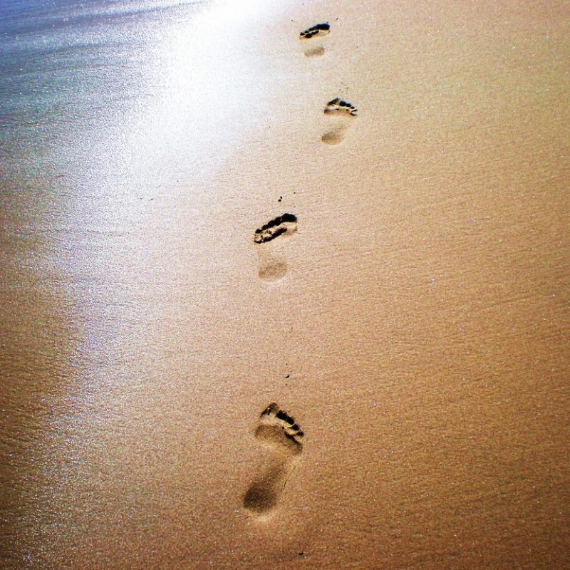 10 Latest Footprints In The Sand Pictures FULL HD 1920×1080 For PC Desktop 2018 free download footprints in the sand wallpaper hd 2 ocean beaches pinterest 1 800x800