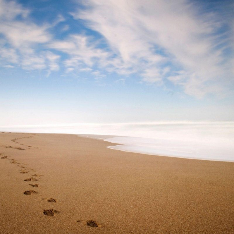 10 Best Footprints In The Sand Wallpaper FULL HD 1080p For PC Desktop 2018 free download footprints in the sand wallpapers wallpaper cave 800x800