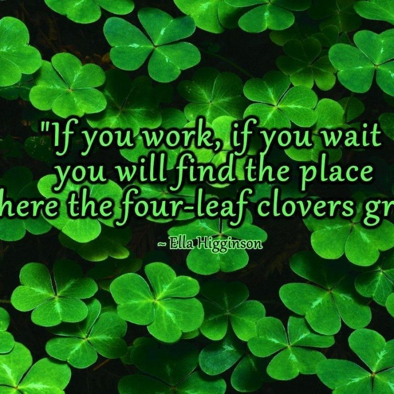 10 Top Four Leaf Clover Wallpaper FULL HD 1920×1080 For PC Background 2020 free download four leaf clover wallpapers wallpaper cave 1 800x800