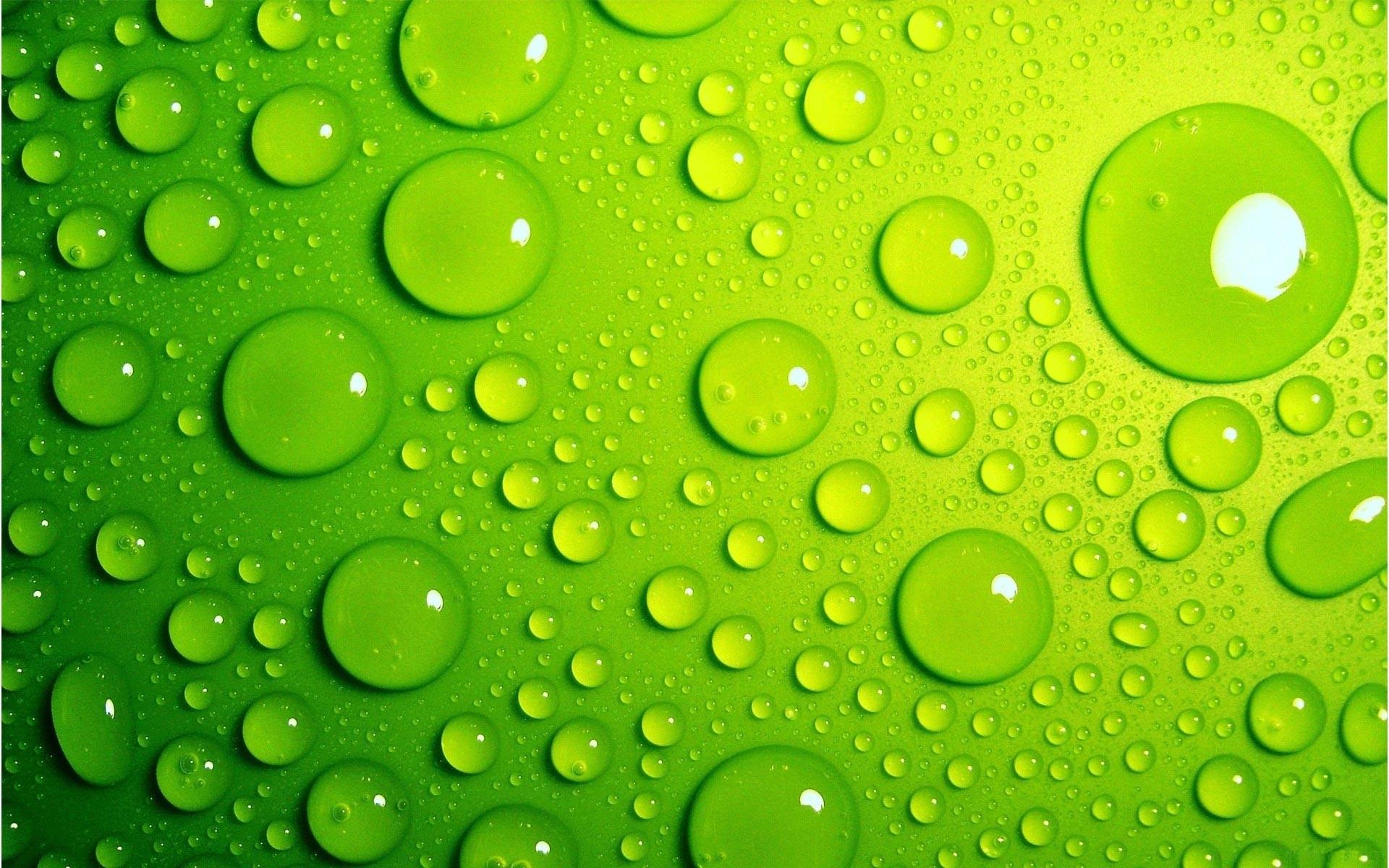 fr:31 light green wallpaper - widescreen wallpapers: light green
