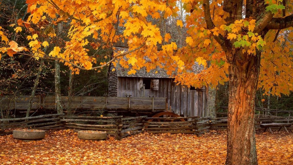 10 Top Free Autumn Wallpaper Backgrounds FULL HD 1920×1080 For PC Desktop 2018 free download free autumn screensavers wallpapers wallpaper cave download 1024x576