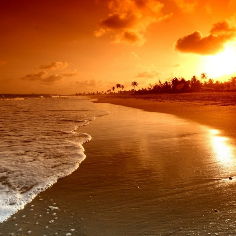 10 New Sunset On The Beach Wallpaper FULL HD 1080p For PC Desktop 2020 free download free beach sunset wallpapers desktop long wallpapers 3 800x800