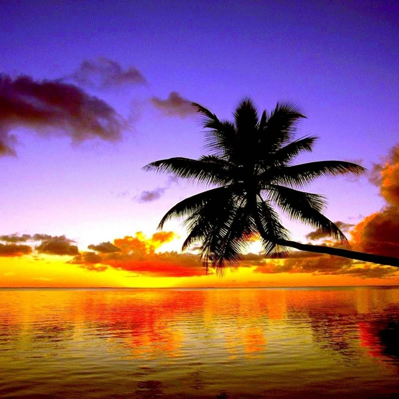 10 Most Popular Sunset Beach Wallpaper Hd FULL HD 1080p For PC Background 2018 free download free beach sunset wallpapers wallpaper cave beautiful wallpapers 1 800x800