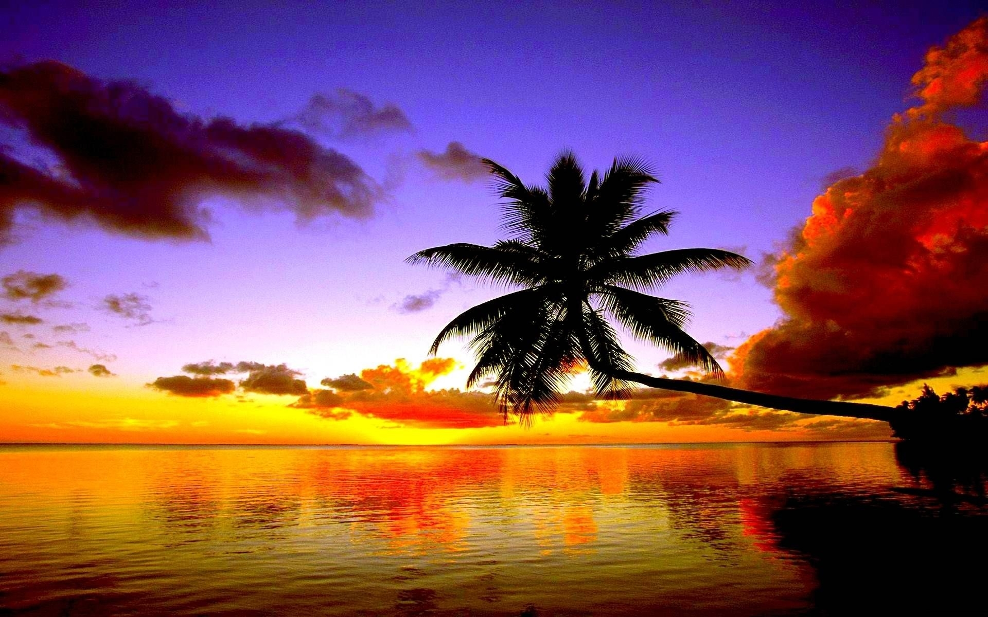 free beach sunset wallpapers - wallpaper cave | beautiful wallpapers